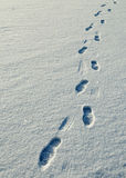 Human footprints in the snow. Royalty Free Stock Photography