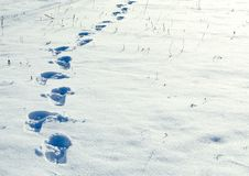 Human footprints in the snow, the path beyond the horizon royalty free stock photos
