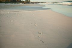 Human footprints on tropical white sand beach in. Tulum, Mexico. See my other works in portfolio Stock Photos
