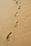 Human footprints on the wet sand Royalty Free Stock Photos