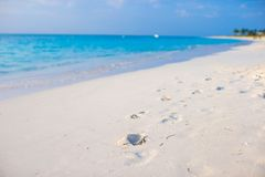 Human footprints on white sand beach royalty free stock image