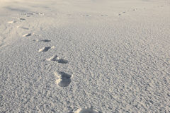 Human footsteps on snow Stock Images