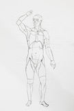 Human front body pencil drawing Royalty Free Stock Photos