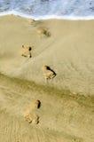 Human futprints on the coastline sand Stock Photography