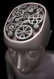 Human Gears Stock Image