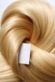 Human hair. Long blond human hair. hair color swatch Stock Photo