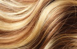 Human hair Stock Images