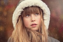 Human Hair Color, Fur Clothing, Beauty, Nose Stock Photos