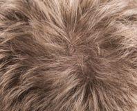 Human Hair texture background Stock Photo