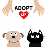 Human hand. Adopt me. Dont buy. Dog Cat Pet adoption.. Puppy pooch kitty cat looking up to red heart. Flat design. Help homeless animal concept. White Royalty Free Stock Image
