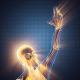Human hand bones radiography. 3D rendered stock photo
