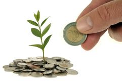 Financial investment concept on white background royalty free stock image
