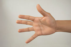 Human hand five fingers Stock Photo