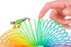 Human hand following a red eyed tree frog on toy Royalty Free Stock Photography
