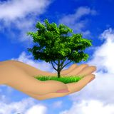 Human hand with grass, tree and sky. Vector. Human hand with grass and tree. Vector illustration stock illustration