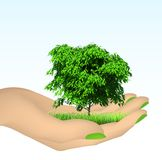 Human hand with grass and tree. Vector Royalty Free Stock Photo