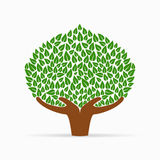 Human hand green tree concept for social help. Green tree symbol with human hands. Concept illustration for organization help, environment project or social work Stock Image