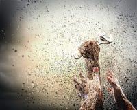Human Hand Holding Royalty Free Stock Image