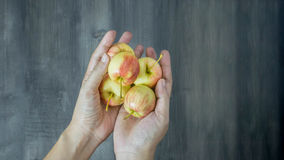 Human hand holding  apple Stock Image