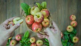 Human hand holding  apple Royalty Free Stock Image
