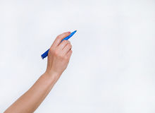 Human hand holding blue ball pen. White background Royalty Free Stock Photography