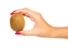 Human hand holding brown kiwi Stock Photography