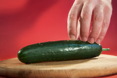 Human hand holding a cucumber. Royalty Free Stock Photo