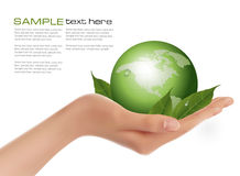 Human hand holding green globe with leaves. Royalty Free Stock Image