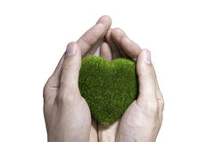 Human Hand Holding Green Grass Heart on isolated white backgroun Stock Photos