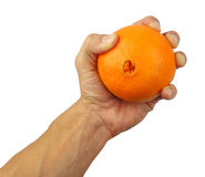 Human hand holding an orange Stock Photo