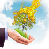 Human hand holding a piece of nature in flames. Royalty Free Stock Photos