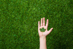 Human hand holding tree leaf Stock Photos