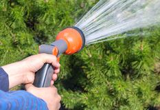 Human hand holding water sprinkler and watering green garden. At summer royalty free stock image