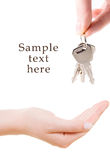 Human hand with keys. On white Stock Photography