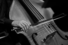 Human Hand playing the contrabass Stock Photography