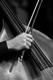 Human Hand playing the contrabass Royalty Free Stock Image
