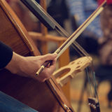 Human hand playing the contrabass Royalty Free Stock Photography