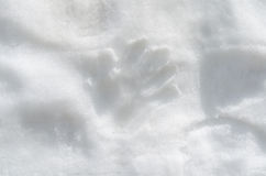 Human hand prints on the white snow. Wall royalty free stock image