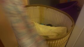 The human hand raises the lid of the basket for dirty laundry and throws the dirty clothes.  stock video footage