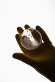 Human hand with rubber glove holding glass globe Stock Photography
