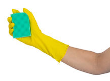 Human hand in rubber glove holding a washing sponge Stock Photo