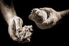 Human hand sharing food Stock Photos