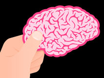 Human hand showing pink brain Royalty Free Stock Photos