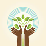 Human hand & tree icon with green leaves - eco concept vector. Stock Photo