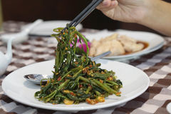 Human hand useing chopstick to eat stir fried morning glory Royalty Free Stock Photos