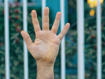 Human hand Royalty Free Stock Images