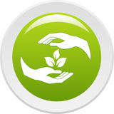 Human hands caring of a plant Royalty Free Stock Images