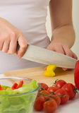 Human hands cooking salad in kitchen. Human hands cooking vegetables salad in kitchen royalty free stock photo