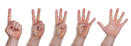 Human hands counting numbers from one to five. Collection of human hands counting numbers from one to five Stock Images