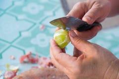 Human hands cut lemon peels Stock Photos
